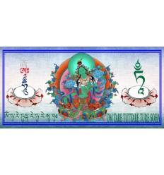 Tara verte - Shyamatara