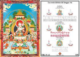 Tara blanche Amitayus Ushnishavjaya