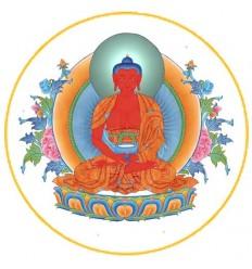 10 adhésifs Amithaba