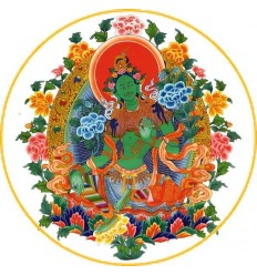 10 adhésifs Tara Verte